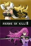 akame_ga_kill_6