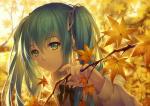 hatsune_miku_3959