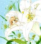 card_captor_sakura_219