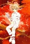 card_captor_sakura_371