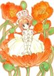 card_captor_sakura_435
