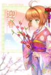 card_captor_sakura_540