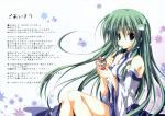 touhou_kochiya_sanae_71