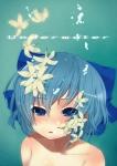 touhou_cirno_203