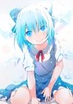 touhou_cirno_344