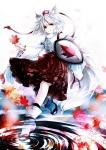 touhou_inubashiri_momiji_230