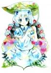touhou_kawashiro_nitori_10