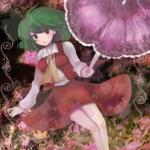 touhou_kazami_yuuka_10