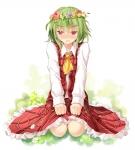 touhou_kazami_yuuka_119