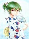 touhou_kazami_yuuka_163