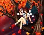 touhou_shameimaru_aya_26