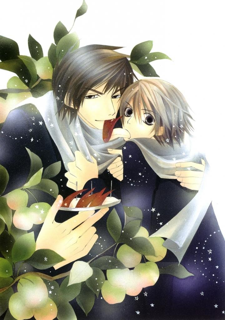 junjou_romantica_25