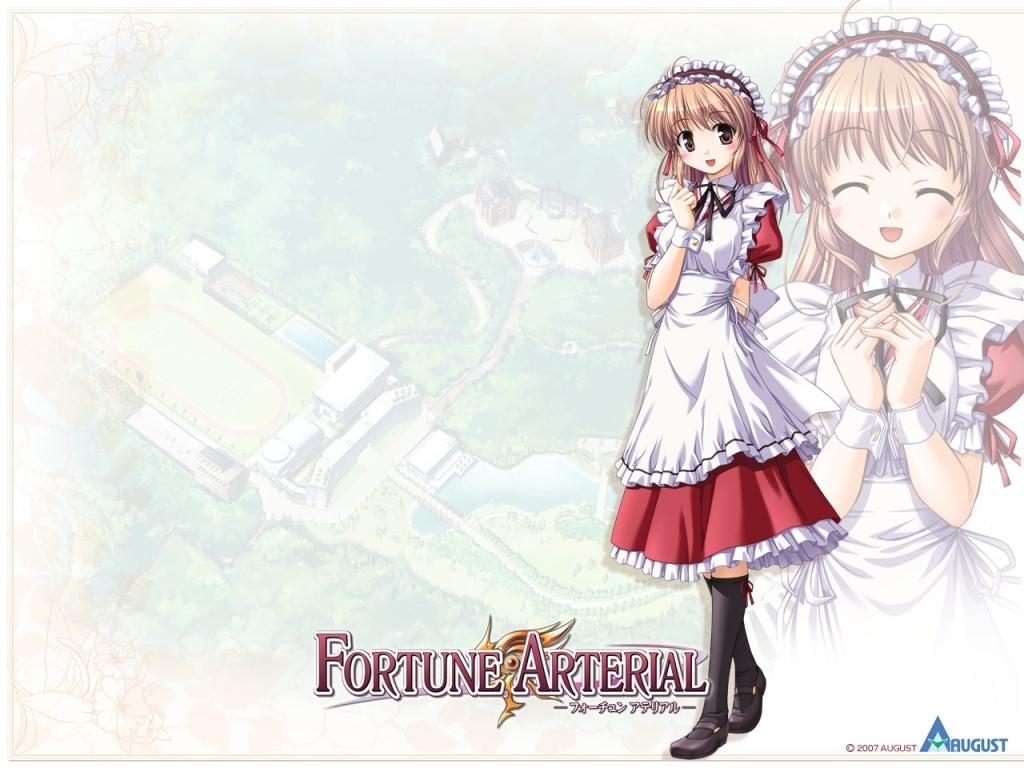 fortune_arterial_14