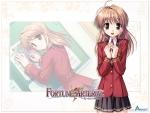fortune_arterial_15