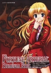 fortune_arterial_16