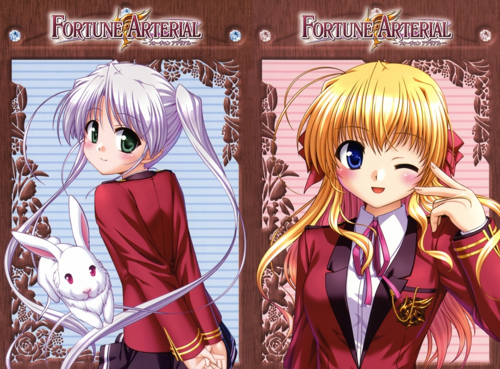 fortune_arterial_28
