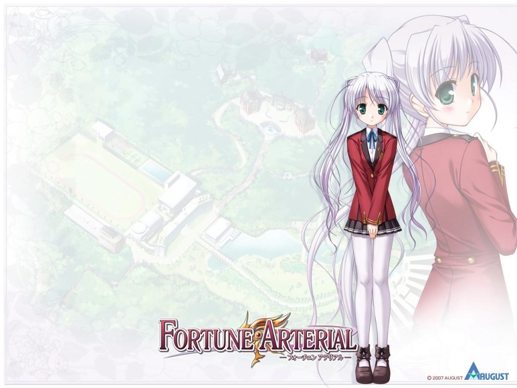 fortune_arterial_4