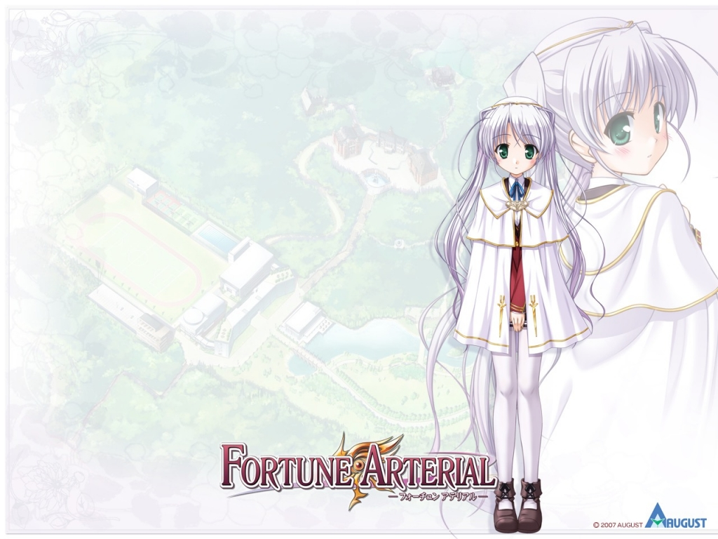 fortune_arterial_5