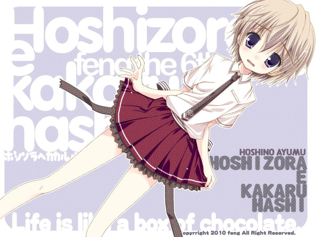 hoshizora_e_kakaru_hashi_30