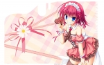 hanasaki_work_spring_56