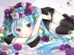 hatsune_miku_4735