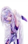 re_zero_kara_hajimeru_isekai_seikatsu_994