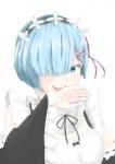 re_zero_kara_hajimeru_isekai_seikatsu_2302