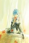 re_zero_kara_hajimeru_isekai_seikatsu_2317
