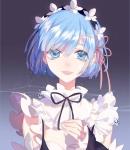 re_zero_kara_hajimeru_isekai_seikatsu_2391