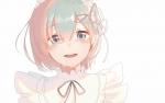 re_zero_kara_hajimeru_isekai_seikatsu_2803