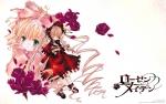 ローゼンメイデン【雛苺,真紅】 #64720