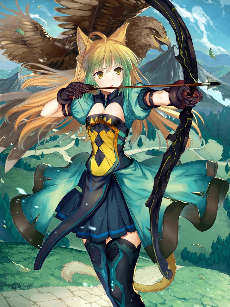 Fate Stay Night Fate Grand Order Fate Apocrypha 赤のアーチャー