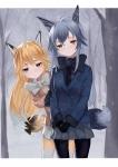 けものフレンズ【キタキツネ,ギンギツネ】