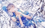 Fate/stay night,Fate/Grand Order【アナスタシア・ニコラエヴナ・ロマノヴァ(Fate/Grand Order)】 #340483